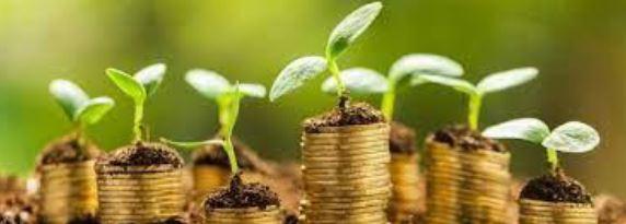 Bourses dans le domaine de l'environnement et de l'économie verte à déposer avant le 5 octobre 2021